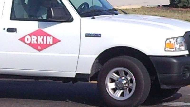 orkin termite treatment