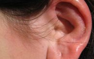 Can a Cockroach Get in Your Ear? and How to Remove