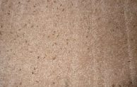 What Does Carpet Beetle Poop Look Like? and How to Clean it Easily